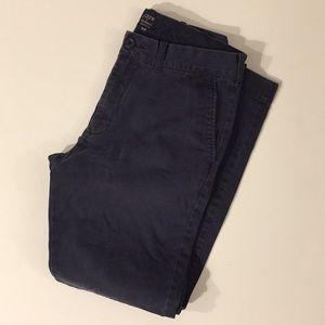 J. Crew pants - The Driggs